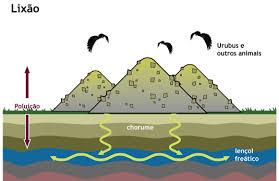 Como ocorre a contaminação