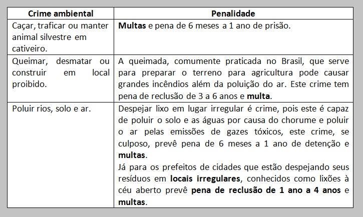 Planilha de crime ambiental e penalidades